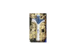 Croce 24011