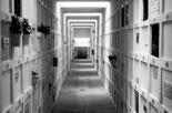 Maxi attacco al cimitero di Caserta: 21 tombe danneggiate