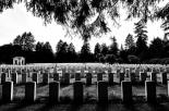 Omosessuale aggredito e rapinato al cimitero di Bergamo