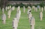 In mutande al cimitero e non solo: atti osceni al San Marco di Rovereto (TN)